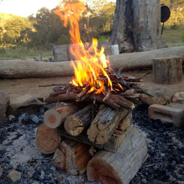 Learn How To Make A Self Feeding Fire 187 Shtf Survival Secrets