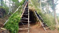 Tipis-shelter