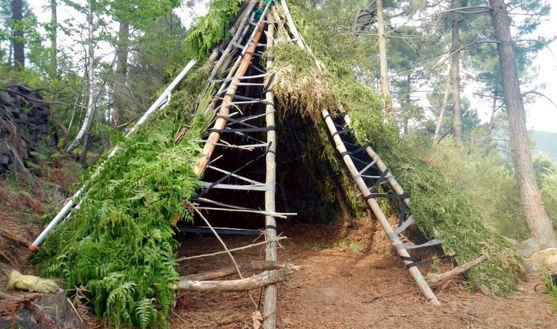 Building A Shelter In The Woods : Building a tepee shelter the easy way shtf survival secrets